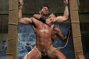 House dom Dirk Caber and a new muscle god